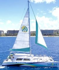 Snorkeling, Whale Watching, Sunset Sails & Private Charters