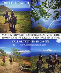 Triple L Ranch Maui Private Custom Horseback Rides
