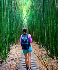 The best hiking tours in Hawaii.
