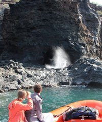 Hawaii boat tours and charters area a great way to see Hawaii.