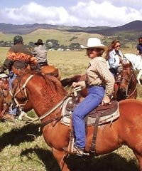 Morning Ride - Cowboys of Hawaii Horseback