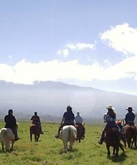 PM Ride 12:30 - Cowboys of Hawaii Horseback