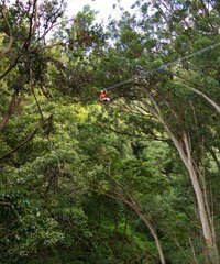 Zipline Tours and Adventures in Kauai