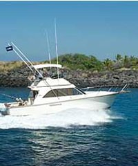 Hawaii style bottom fishing