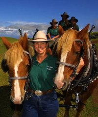 Ride at Two Locations - the 12,000 Acre Kahua Ranch and the beautiful Waipio Valley