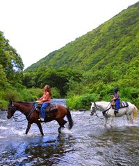 Waipio Valley PM Ride - Na'alapa Stables