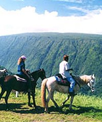 PM Horseback, Waterfall Swim & Picnic Ride - Wailea Horseback Adventure