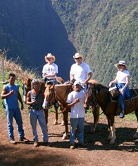 AM Horseback, Waterfall Swim & Picnic Ride - Wailea Horseback Adventure