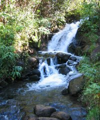 Waterfall Tour 3-4 hours - Kauai ATV Tours