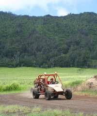 4-Wheel Vehicle Tours, Horseback and ATV Combo