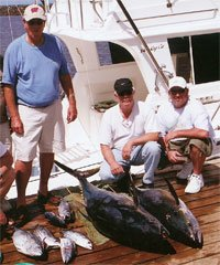 Deep Sea Charter Fishing, Whale Watching
