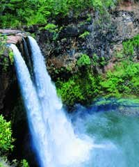 On Kauai (K-1) Waimea Canyon and Wailua River Tour - Polynesian Adventure Tours