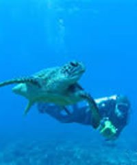 PM Dive Charter & Intro Dives