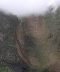 Princeville Kauai - Early Bird