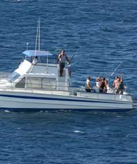 Bottom Fishing - Aloha Blue Charters