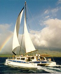 Snorkel Sail Adventure  - Gemini
