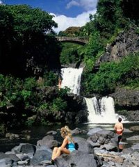 Hana Full Day Waterfall and Rainforest - Hike Maui
