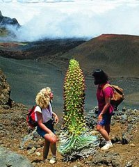 Haleakala Crater Hiking Experience - Hike Maui