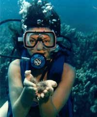 Beach Dive 1 Tank Certified