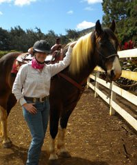 Private Horsemanship Instruction