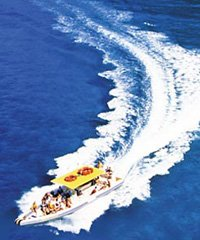 Explorer- Lanai with Landing - Maui Adventure Cruises