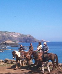 ATV Ranch Tours and Horseback Rides, Waihee Maui