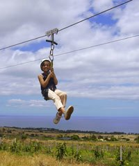 Zipline / Adventure Tour