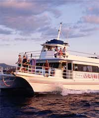 Molokini and Turtle Town Snorkel/Snuba and Scuba Dive - Pride Charters