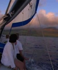 Maui Sunset  Sail- Scotch Mist