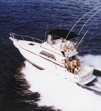 Hawaii Deep Sea Fishing Charters Kauai Deep Sea Fishing