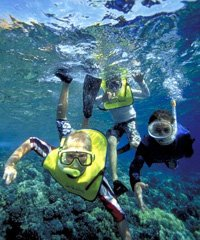 Discover Kaanapali Snorkel / Sail - Trilogy Excursions