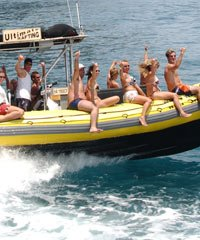 Lanai Adventure Snorkel - Ultimate Rafting