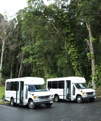 Private Road to Hana Charter - Valley Isle Excursions Inc.on Maui