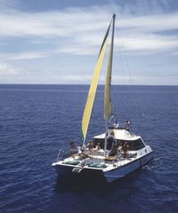 Rainforest to Reef- Bike, Hike, Sail and Snorkel Half Day - Bike Hawaii
