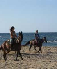 Oceanfront trail rides