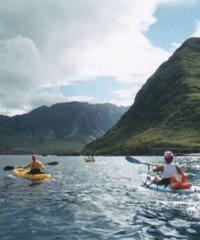 Guided Hawaiian Wildlife Tour - Twogood Kayaks Hawaii