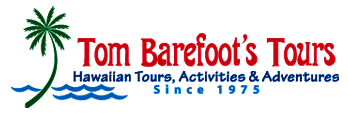 Use Tom Barefoot's Tours to book your tours activities when you visit Oahu.