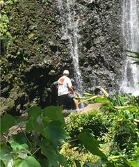 Book the Hana Tour with Dynamic Tour Hawaii