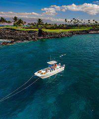 Aloha Dolphin Tours - 25 Foot Power Catamaran, Group and Private Cruises