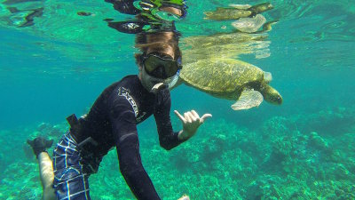 Great snorkeling spots to view Hawaii's Tropical Fish