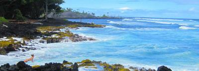 Big Island Beach Guide