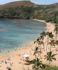 Reserve the #11 Majestic Circle Island Tour with E Noa Tours Honolulu.