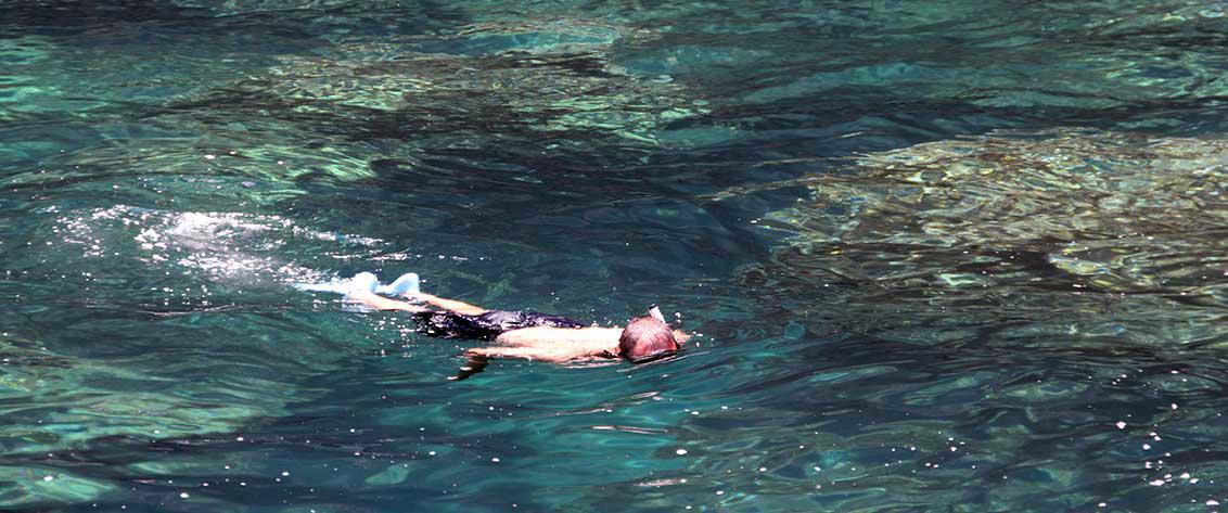 Kaua`i's Best Snorkeling Tours