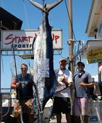 Shared Charters - Start Me Up Sportfishing on Maui