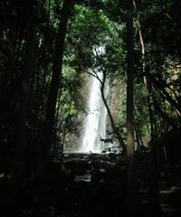 Alii Waterfall Tour - AM