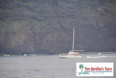 Kauai Sea Tours Napali Coast