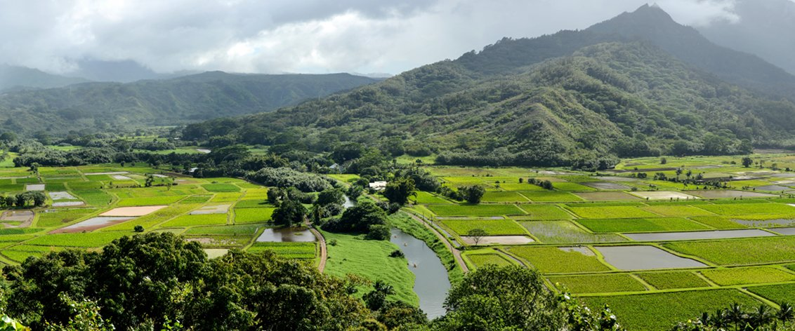 Some of the most beautiful sightseeing tours in Hawaii are found on Kauai.