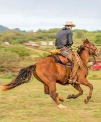 Private Advanced Trail Ride Experience - Gunstock Ranch
