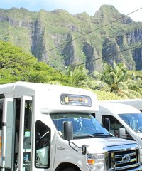 Aloha Hawaii Tours - Sightseeing in Paradise