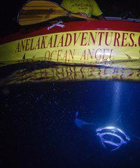 Night Manta Double Hull Canoe Adventure - Anelakai Adventures